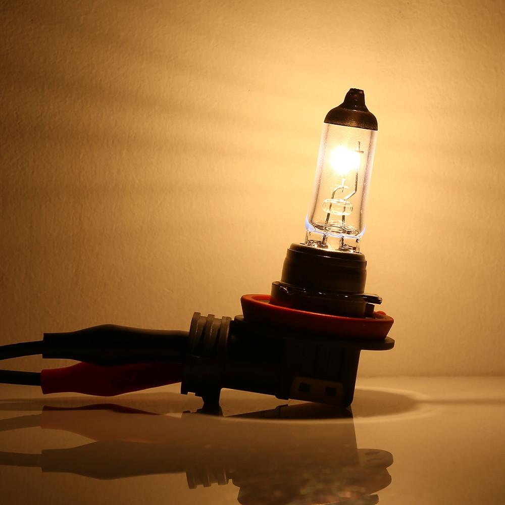 Philips H8 12360C1 Standard Halogen Lamp