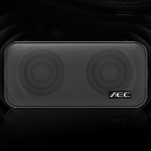 AEC Portable Wireless Bluetooth Mobile Power Speaker