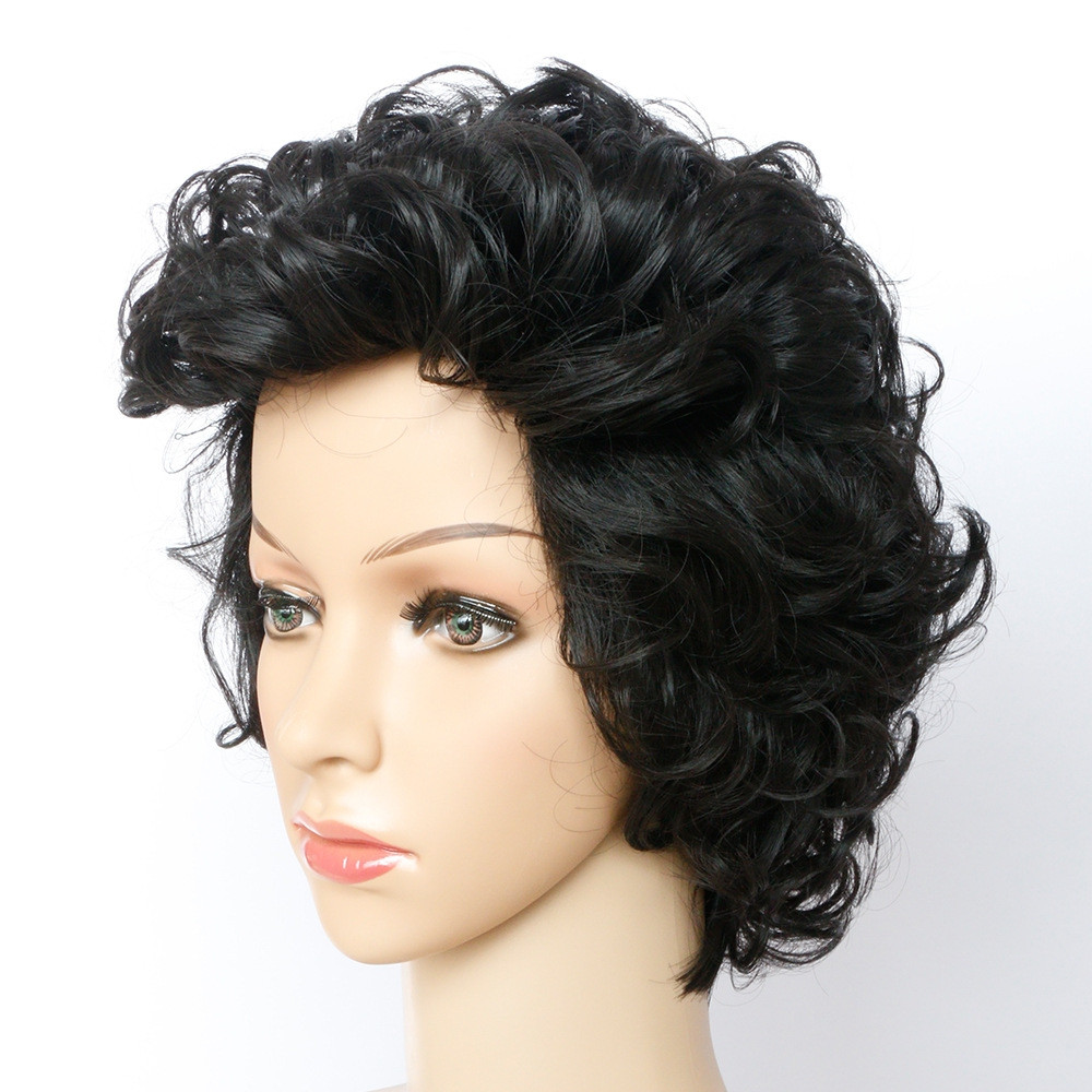 Short Curly Hair Synthetic Wig #001