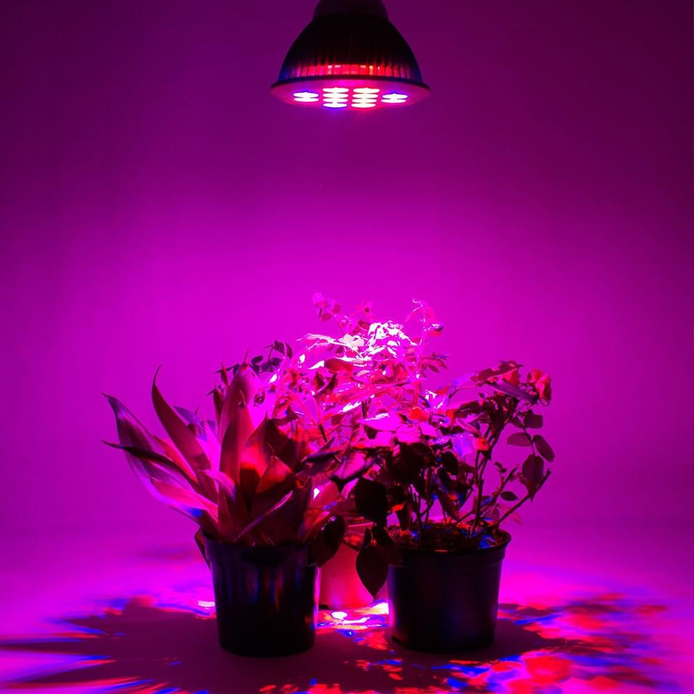 Youoklight 1PCS E27 24W Ac 85~265V 12 - Led Plant Grow Light - Mint Green GREEN E27