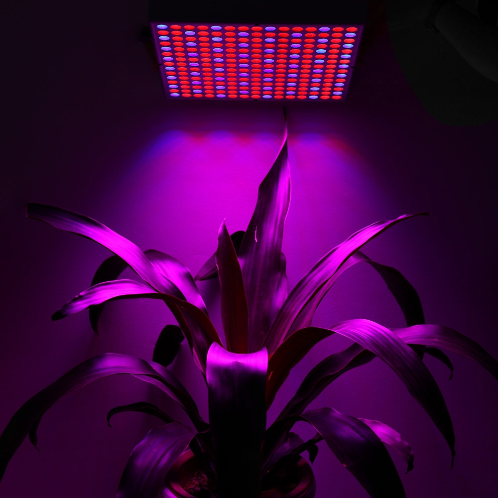 225 LEDs 45W SMD 2835 LED Grow Light Panel Lamp for Hydroponics Indoor Plant SILVER US PLUG