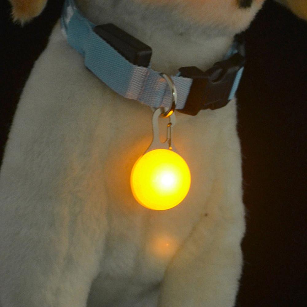 KWB Dog Cat Pet Collar Light 6Pcs Waterproof LED Dog Collar Safety Night Walking Lights Keychain COLORFUL