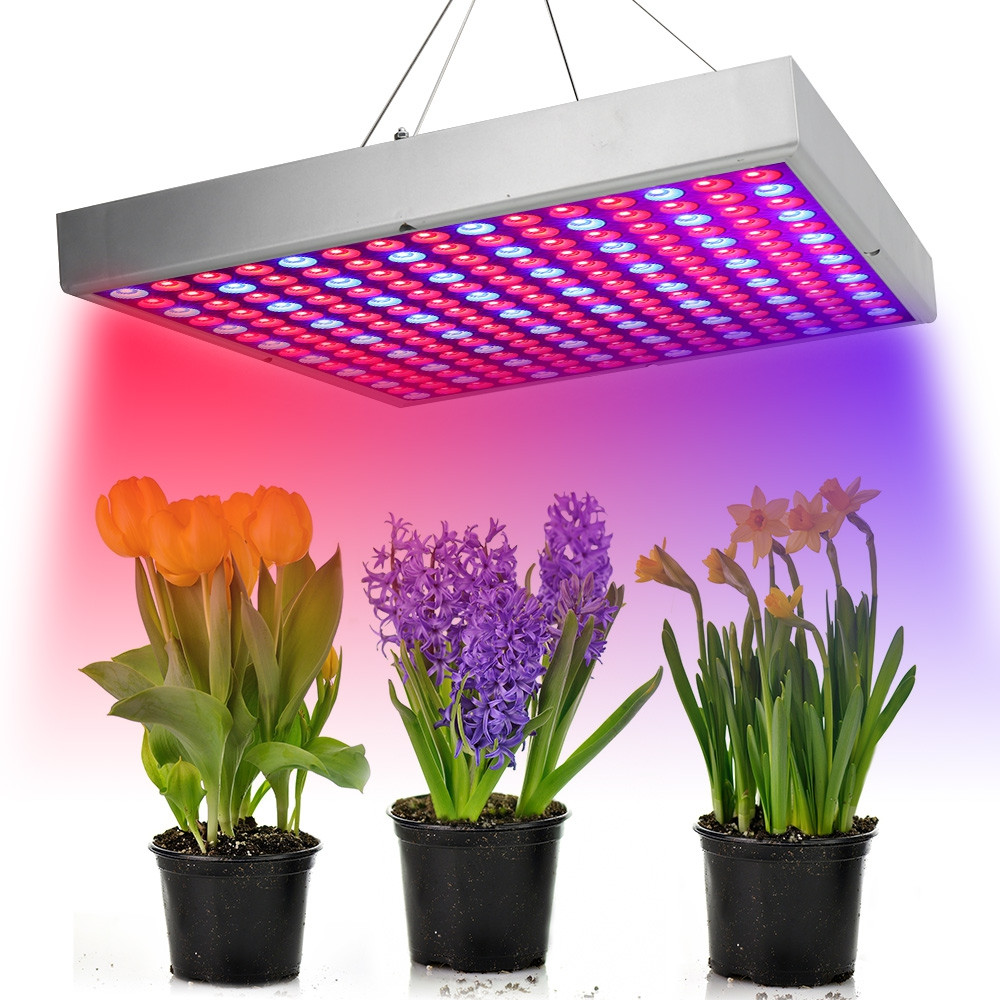 30W225 Red and Blue LED Plant Growth Lamp PLATINUM US PLUG (3-PIN)