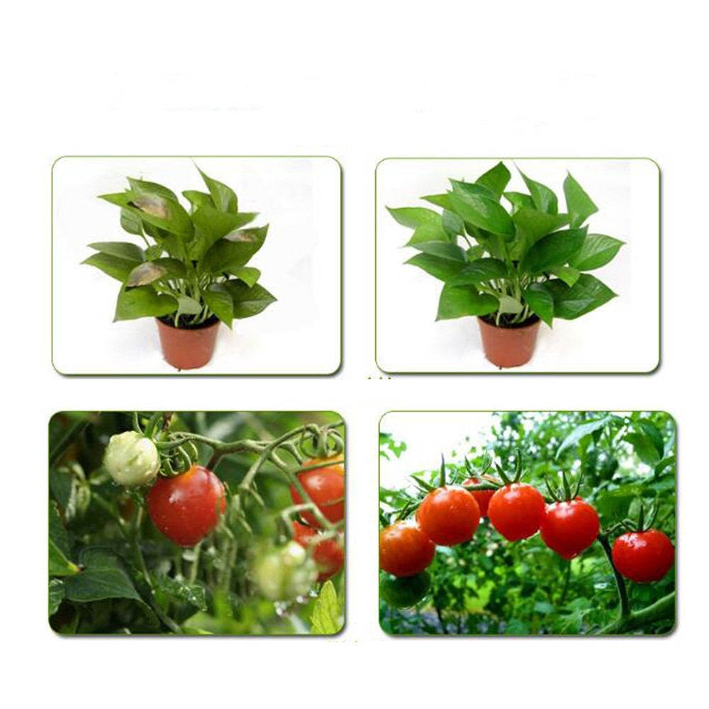 20W 220V LED Full Spectrum Plant Growth Light Chip for Garden ORANGE 60X40MM