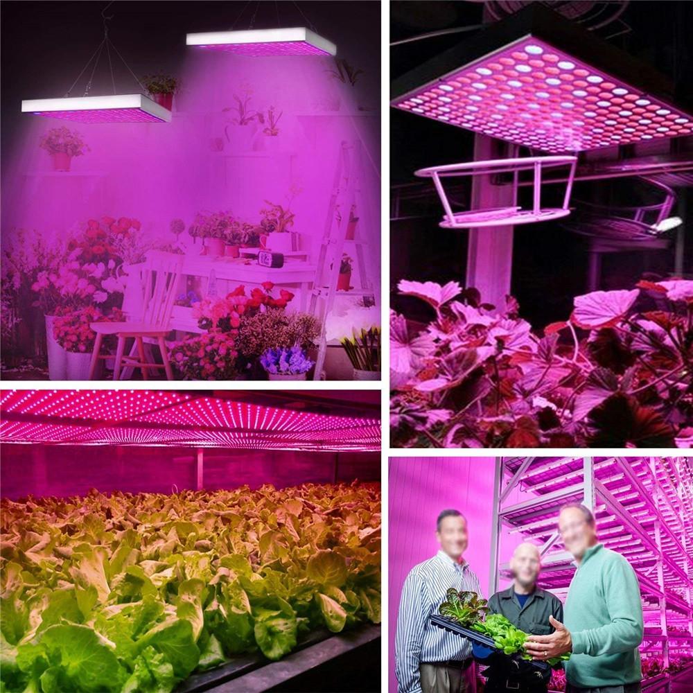 YWXLigh Full Spectrum Panel LED Grow Light for Indoor Plants Flower Hydro Garden MULTI-B UK PLUG