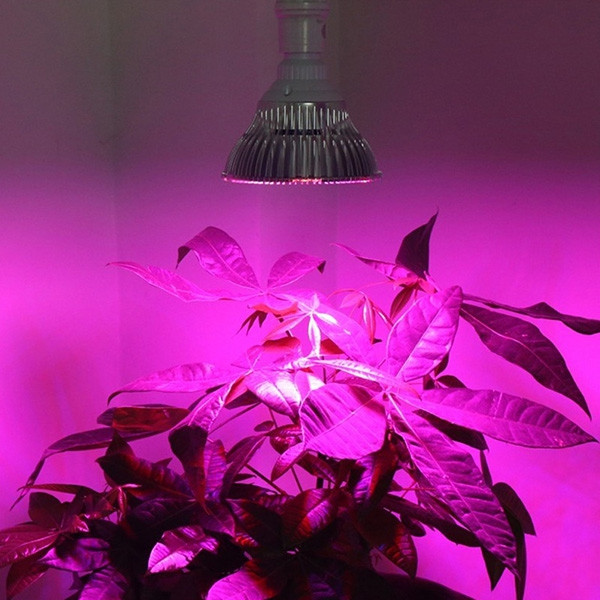 30W E27 Full Spectrum LED Plant Growth Light for Home Use SILVER