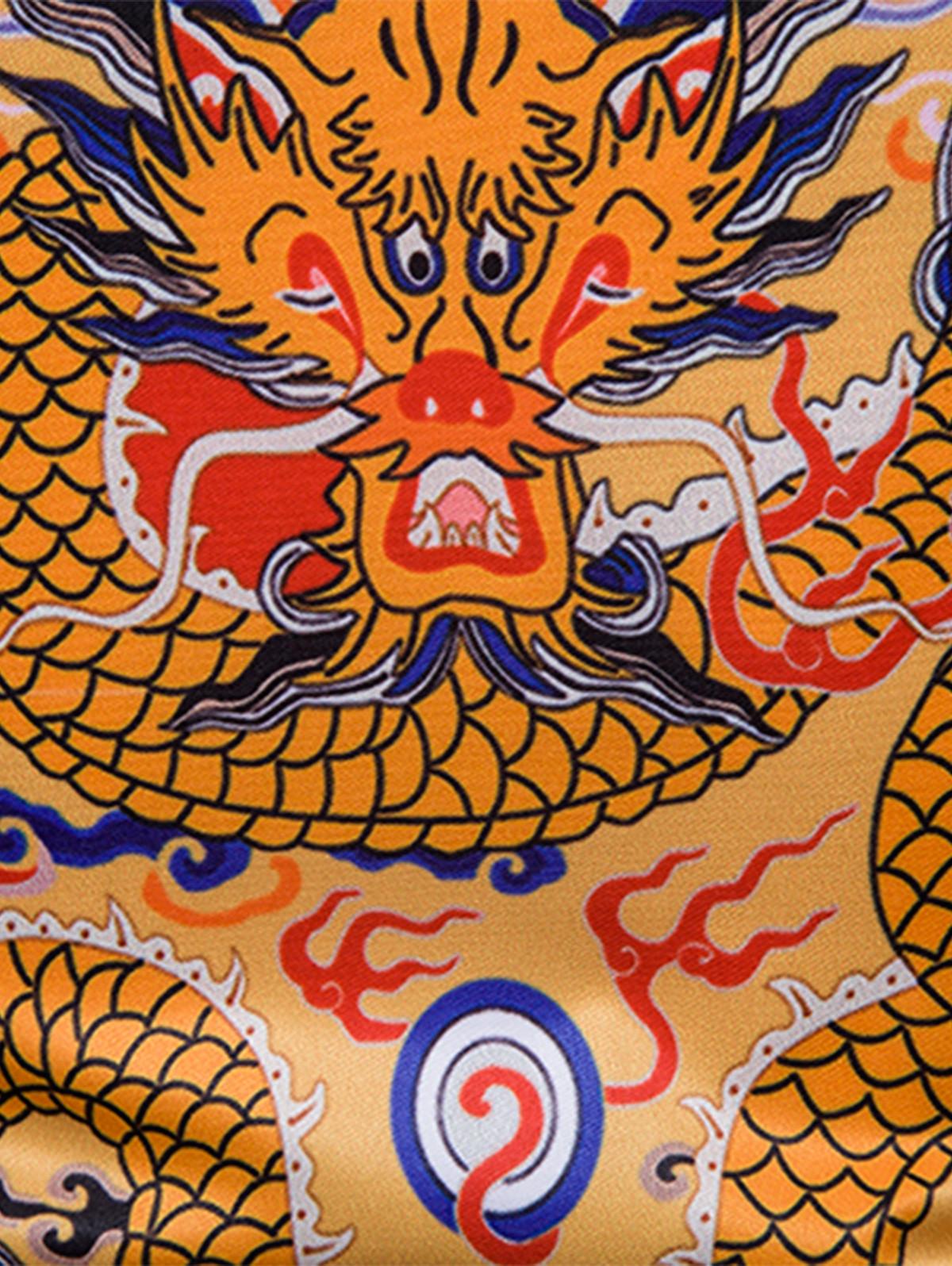 Chinoiserie Dragon Print Turndown Collar Shirt COLORMIX 3XL