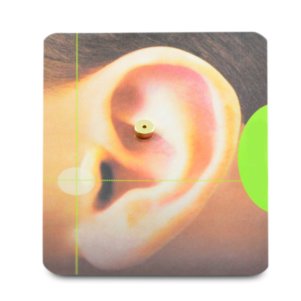 1 Pair Acupoints Massage Magnet Slimming Stud Earrings GOLDEN