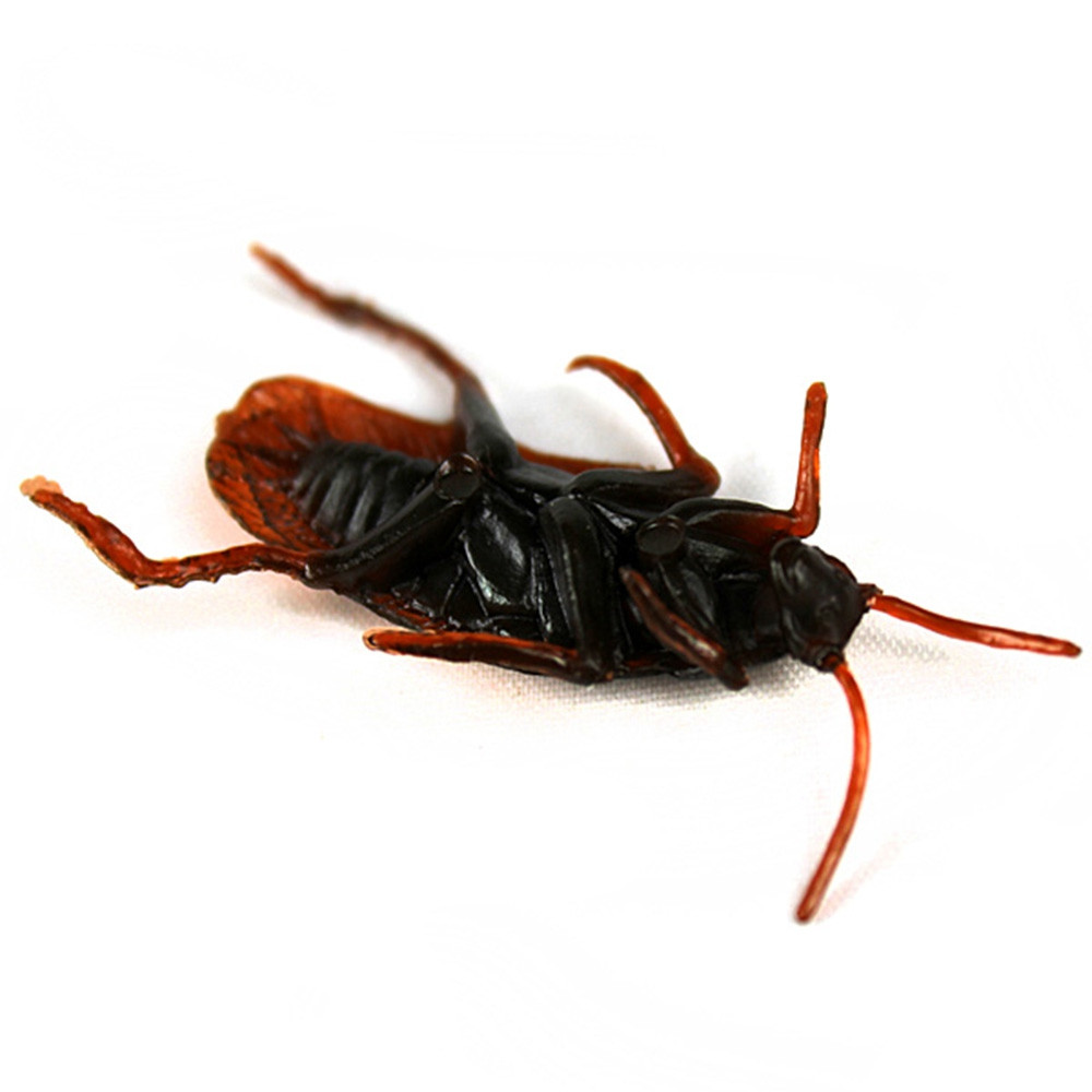 Plastic Artificial Cockroach Realistic Prank Trick Toy for Fools Day Halloween Party 5pcs