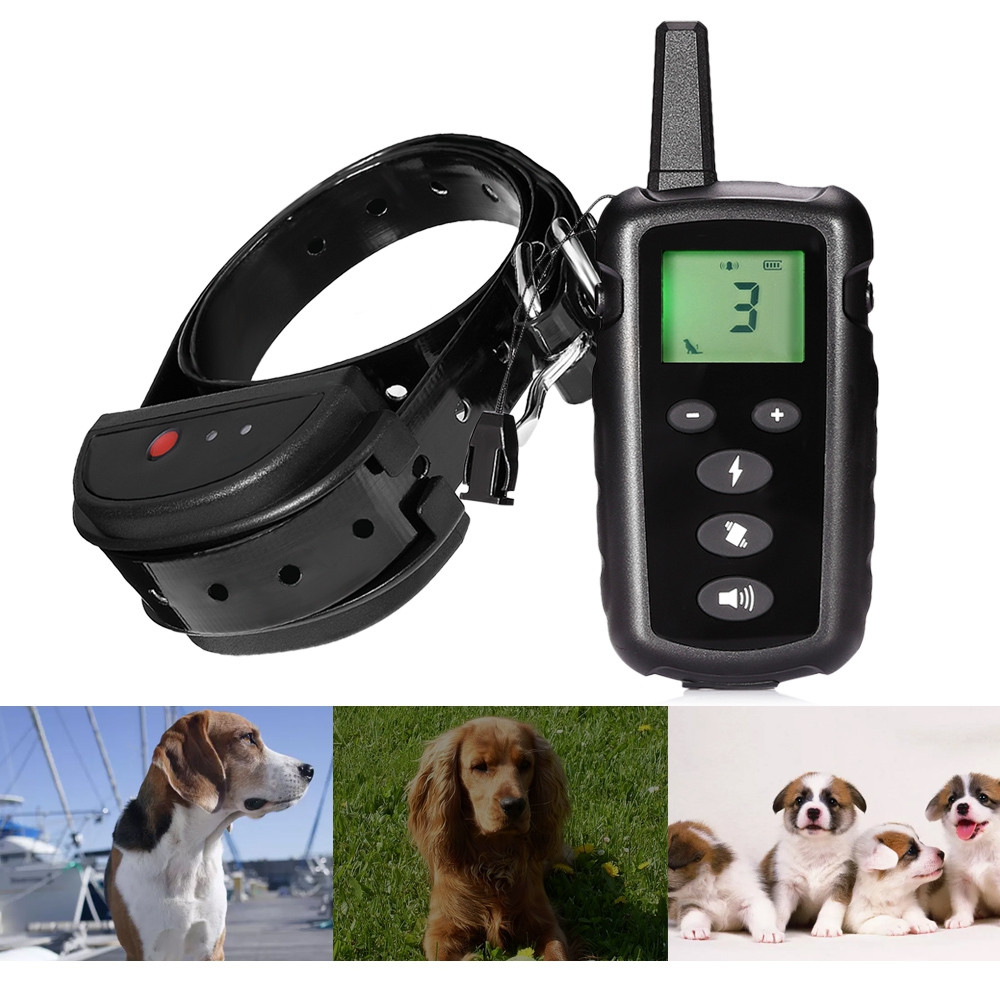 998DRN Rechargeable Remote Dog Training Shock Collar