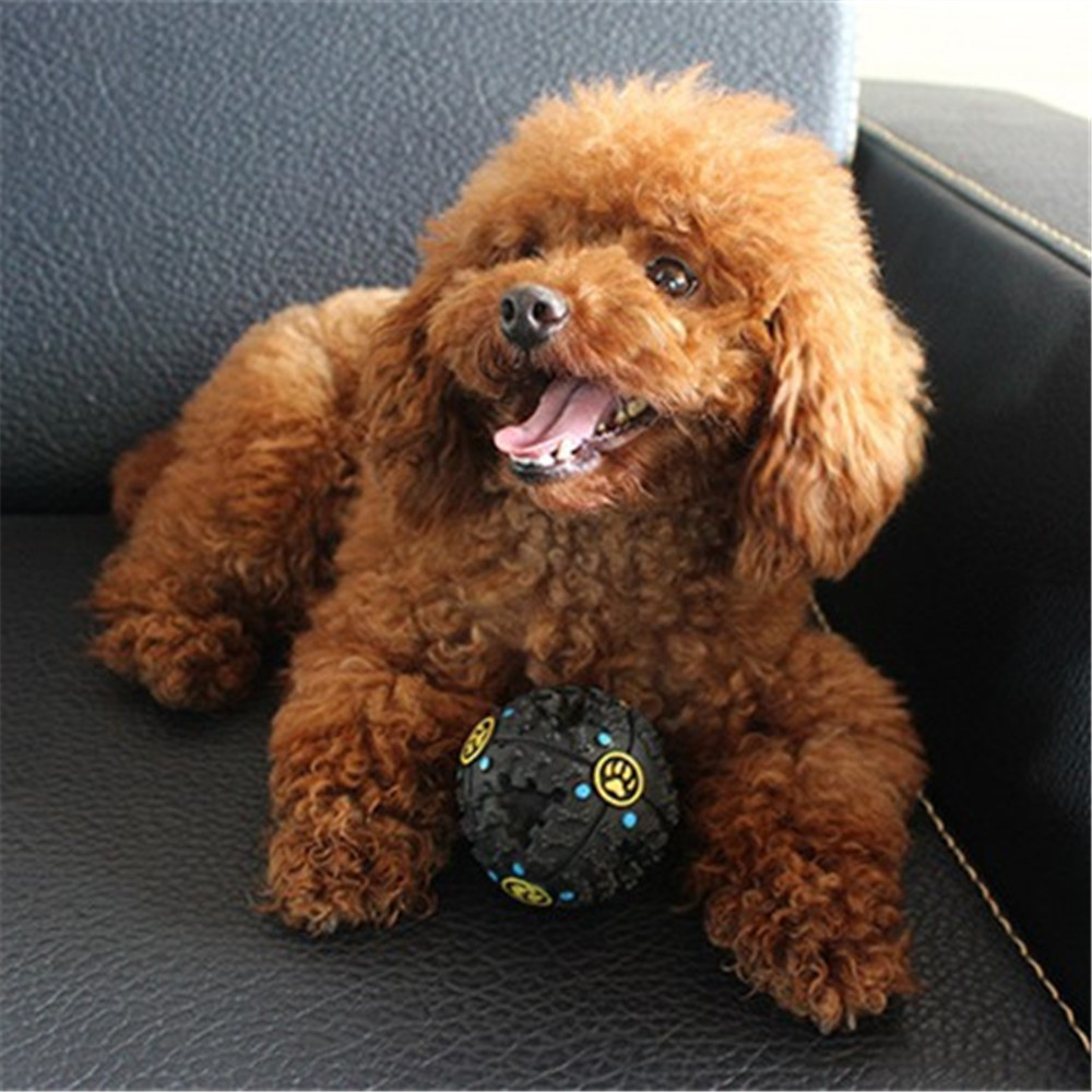12 CM Hot Sound Leakage Food Ball Dog Toy Pet Shrieking Ball Puzzle Resistant Teeth Bite Toys
